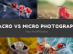 Macro Vs Micro Photography